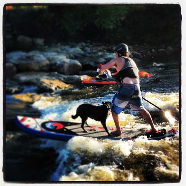 river-running-standup-board-with-a-dog