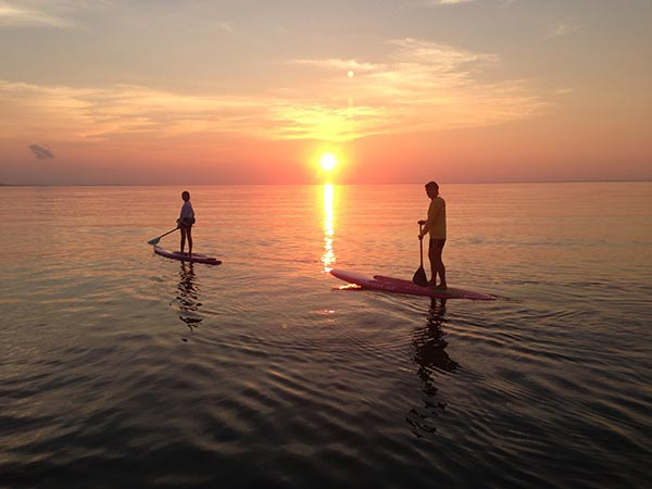 suset paddlers