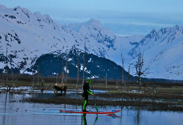 Karl Mittelstadt: SWAMP DONKEY TOURS ......Paddling Placer valley Alaska with Moose