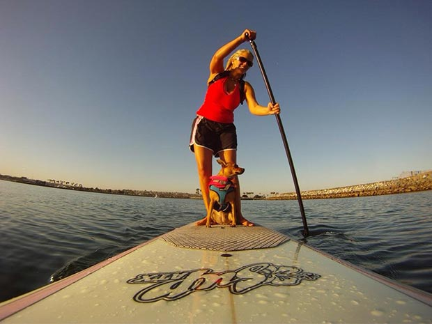 Lindsee Pitsch Early morning SUP session with my favorite SUP pup! Little miss Cali loves to hang 2...paws. Mission beach in San Diego, CA. Cali has fun board hopping when other join us and is always super excited to get out on the water from day 1.