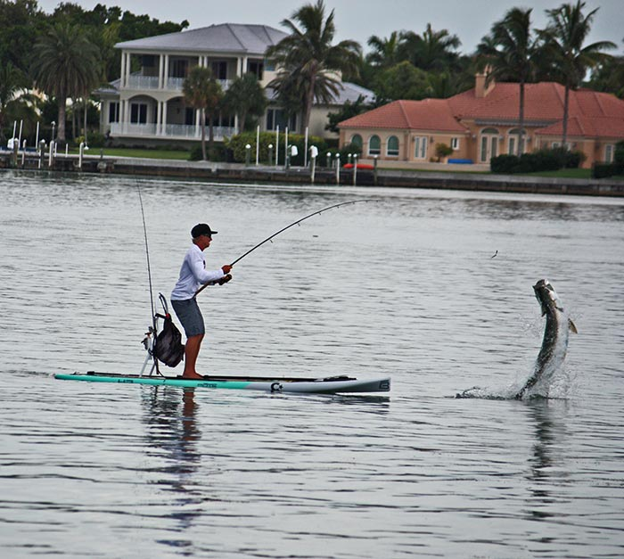 Nick Halloran: No paddle needed... Talented Amateur photographer, Roger Ierardi snapped this picture of myself (Nick Halloran) fighting this gorgeous tarpon from my Bote HD on July 11th in Sarasota Florida.