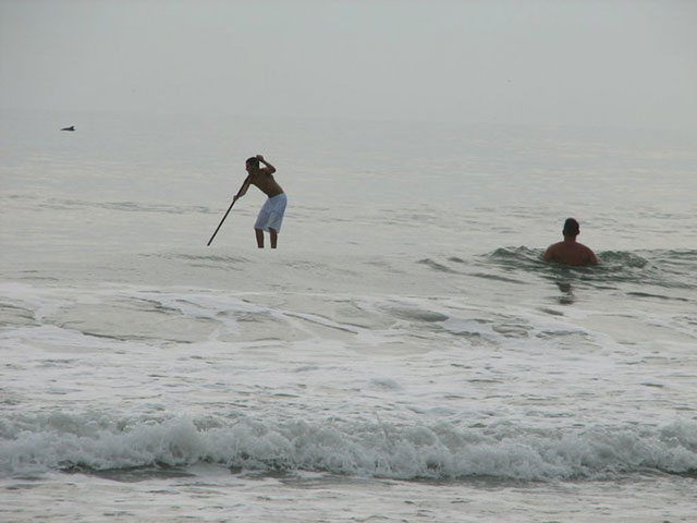 daniel Grundvig: My son Nick Grundvig paddling off the coast of Flagler Beach Florida (just north of Daytona) with a porpoise in the back ground, we did not see them until we looked at the pictures.