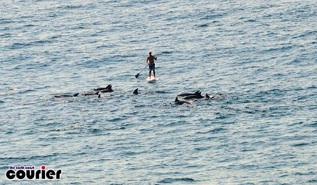 Andrew Cairns: A magnificent morning in Thompsons Bay, Ballito , South Africa. I paddled with and around the Dolphins for 20 minutes. A mother and baby jumped over the front of my board several times. People on the beach were mesmerised. It was one of those life time moments that one will never forget - truly remarkable !