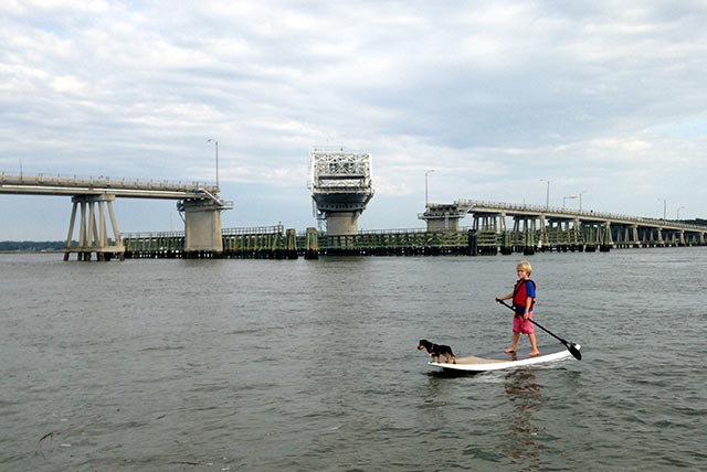 Tim Lovett: A boy and his dog....... Henry and his faithful sidekick Hobie running the Beaufort river as the Woods Memorial Bridge opens in the background. NO the bridge did not open for Henry.