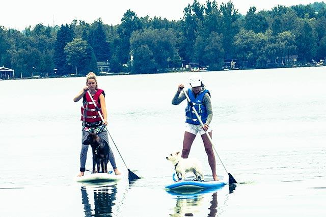 Stephanie Pignoli: 4 newbie Sup'ers- Myself and my 5 month old GSD and my Mom with her 7 year old Westie