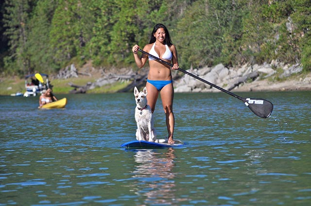 Janice Gardner: Whoever said diamonds are a girl's best friend never had a dog...or an SUP! Koda (aka Kotes-Ma-Gotes) loves keeping watch for oncoming boats and boarders and I love having my best friend by my side as we cruise the SUP around Bass Lake.
