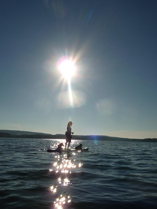 Jurgen Schweitzer: Sundown with Finley & Lenny at Brombachsee Germany! ;-)