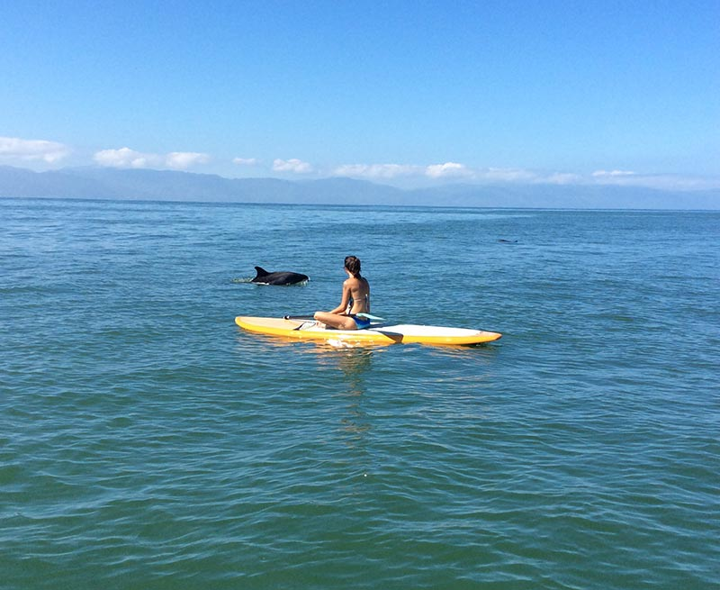 Dana Doncaster: Nuevo Vallarta Mexico...calling you paddleboarders to come play with me!
