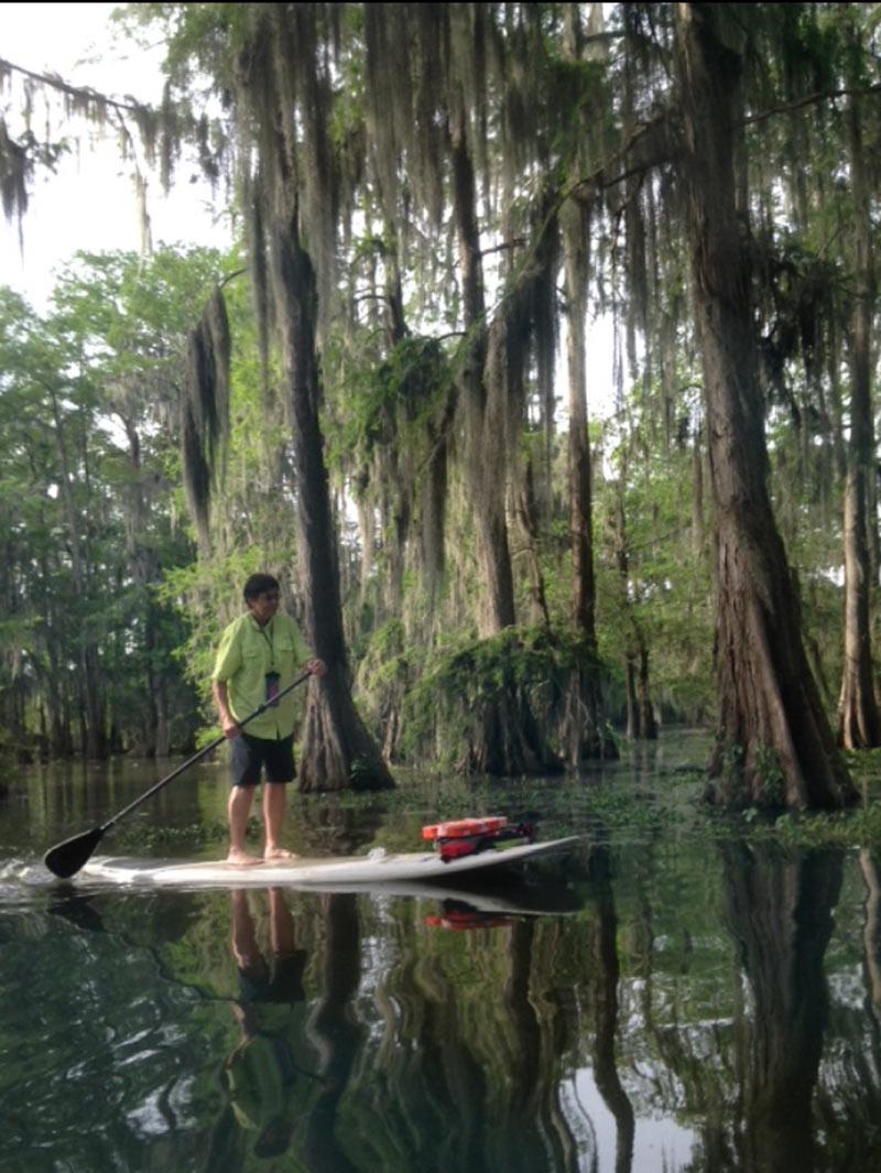 Denise Dugal: SUPing thru the cypress and Tupelo trees at Lake Martin in South Louisiana. It's a wildlife sanctuary and natural rookery. Lots of alligators that provide lots of incentive to stay on top of your board.