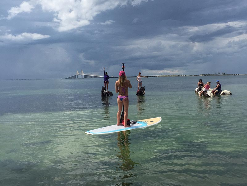 Evey Hammond: SEA-Horse SUP n Swim at the Skyway Bridge in St. Petersburg Florida