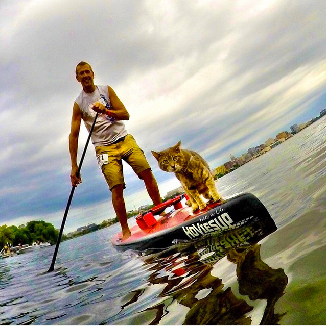 "@chuckpatterson: ""Lake Life"" Madison, Wisconsin #gopro #HERO4Session #catsup #onlyinthemidwest #catlife @gopro"