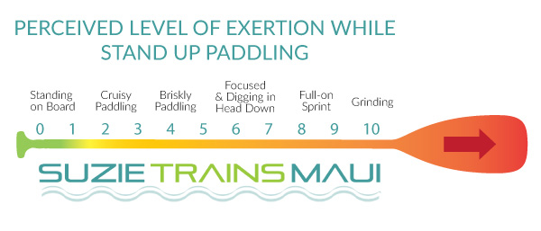 suzietrainsmaui_paddlechart copy