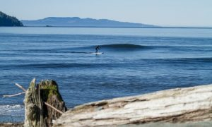 SUP Surf Vancouver Island