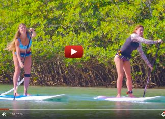 ACE-TEC Performer Sup | Surf-Inspired Longboard Shapes