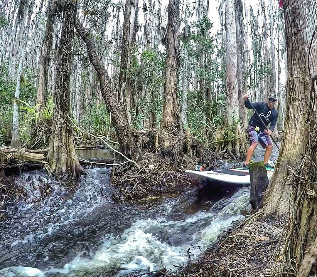 Dodging Trees and Running Rapids In Central Florida