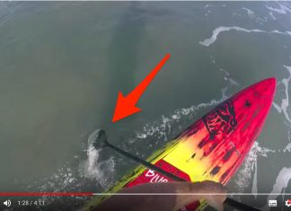 how to catch 5 times the waves on your stanup paddleboard