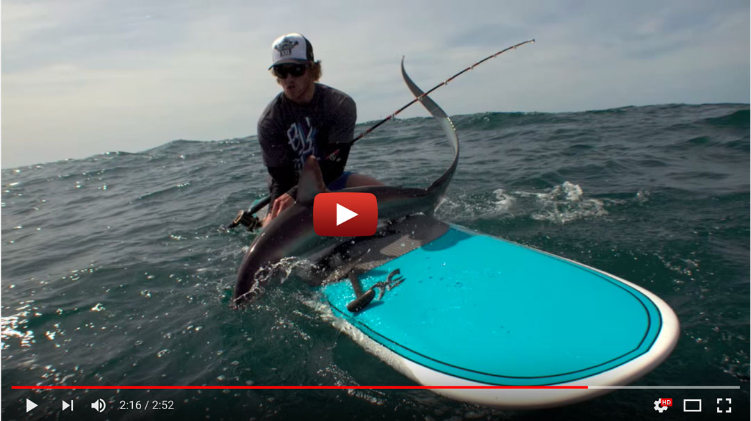 Thresher Shark Fishing On A Hobie Standup Paddleboard!