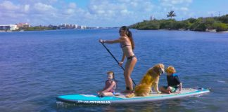 Beautiful New Multipurpose Sup From JP Australia Includes a Night Paddling Light