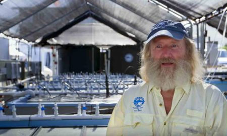 This Scientist Was About To Retire Then Found A Way To Save The Planet